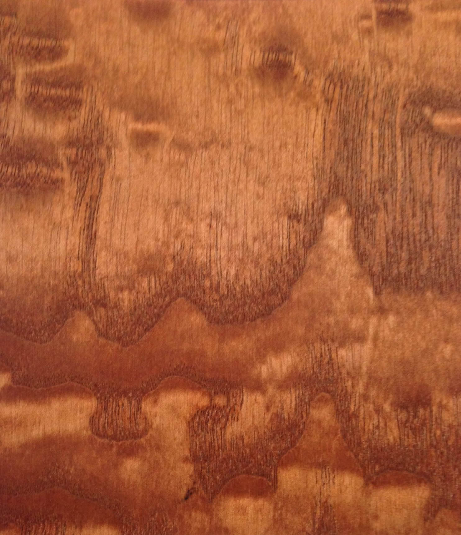 Ash Tamo Burl Stained 090302