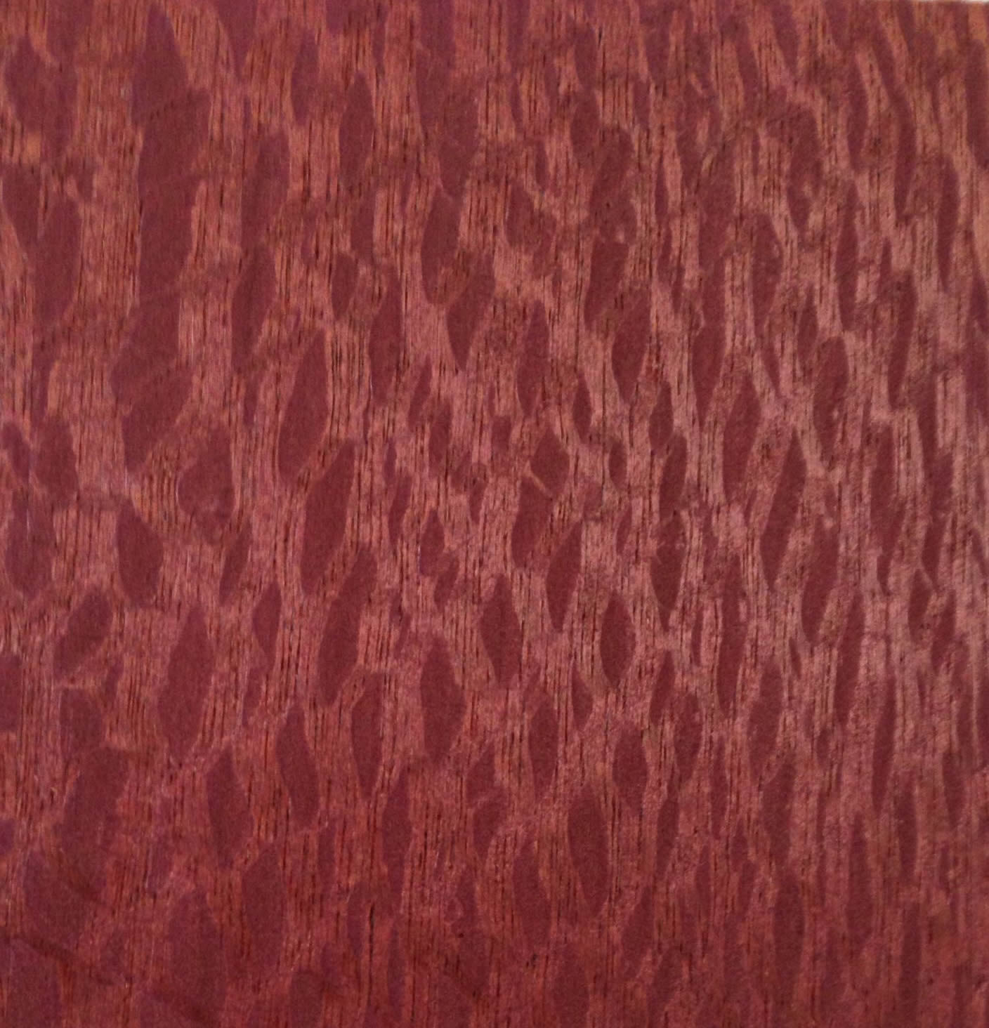 Lacewood QC Stained 120525