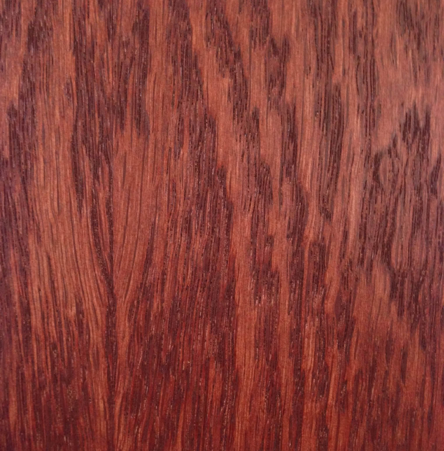 Oak Red FC Stained 090704