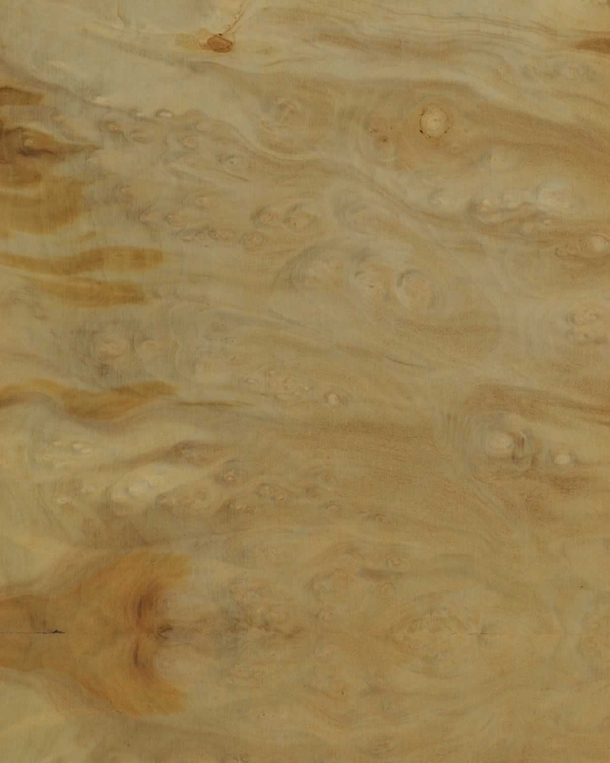 SanFoot Laurel Burl